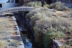 Las Palomas Hot Springs